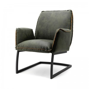 Sessel grün, Sessel mit Armlehne, Freischwinger grün Sessel Industriedesign